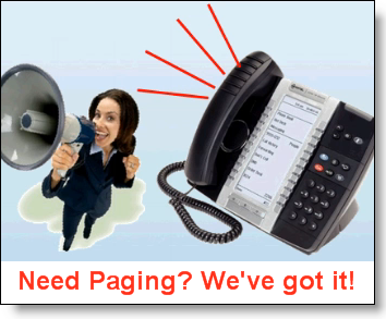 Broadview-paging-hosted-voip