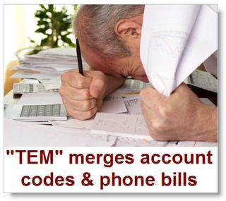 Tem-merges-account-codes-and-phone-bills